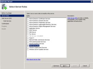 Select Server Role